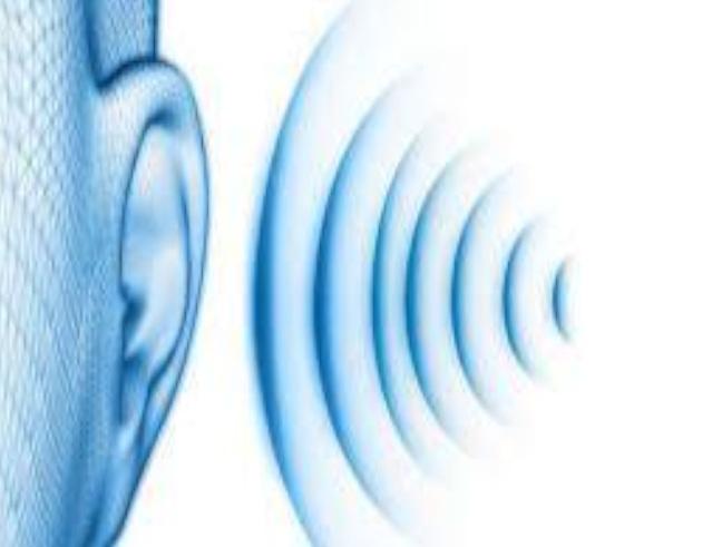 Autocertificazione rischio rumore inferiore a 80 dB(A)